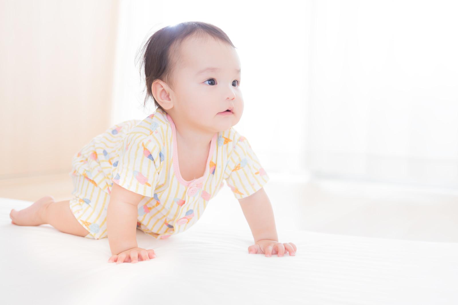 ハイハイの赤ちゃん